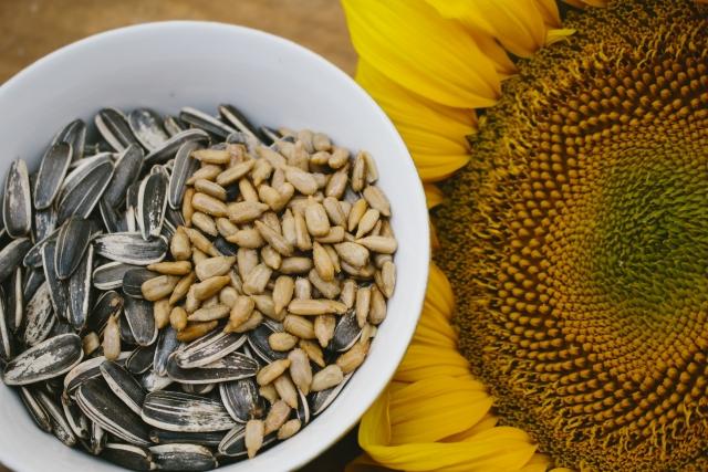 ヒマワリ種子油の写真